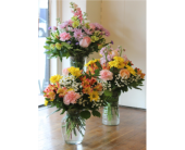 Designer's Choice in Winchester, Virginia, Flowers By Snellings