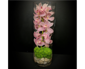 Orchid Vase in White Rock, British Columbia, Ashberry & Logan