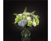 The FTD® Superior Sights™ Luxury Bouquet in Norfolk VA, The Sunflower Florist