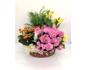 Garden Of Color in Smyrna GA, Floral Creations Florist