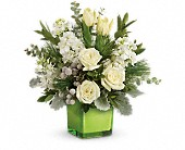 Teleflora's Winter Pop Bouquet in San Jose CA, Rosies & Posies Downtown