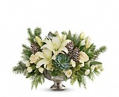 Teleflora's Winter Wilds Centerpiece in Oakland CA, Lee's Discount Florist