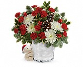 Send a Hug Bear Buddy Bouquet by Teleflora in Fredericton NB, Flowers for Canada