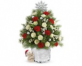 Send a Hug Cuddly Christmas Tree by Teleflora in Orlando FL, Elite Floral & Gift Shoppe