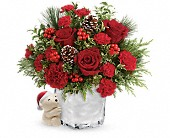 Send a Hug Winter Cuddles by Teleflora in Dallas TX, Petals & Stems Florist