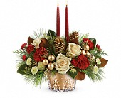 Teleflora's Winter Pines Centerpiece in Fredericton NB, Flowers for Canada