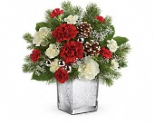 Teleflora's Woodland Winter Bouquet in Fredericton NB, Flowers for Canada