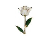 White Gold Rose in 24 kt in Aston PA, Blair's Florist