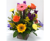 Box of Flowers in Frisco TX, Patti Ann's Flowers