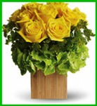 Box of Sunshine in Hamilton ON, Joanna's Florist