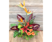 Birds In The Tropics in Smyrna GA, Floral Creations Florist