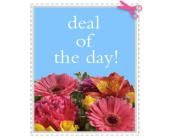 Deal of the Day in Portsmouth NH, Woodbury Florist & Greenhouses