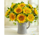 SunFlowersPitch in Concord NC, Pots Of Luck Florist