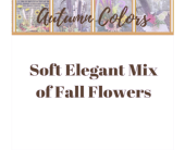 Soft Elegant Mix of Fall Flowers in Eau Claire WI, Brent Douglas