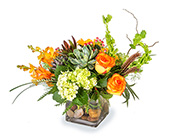 Splendid in Fort Worth TX, Greenwood Florist & Gifts