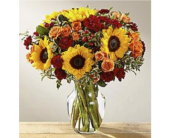 FTD Fall Frenzy Bouquet in Cleveland OH, Orban's Fruit & Flowers