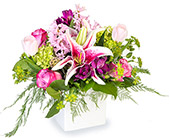 Alluring in Fort Worth TX, Greenwood Florist & Gifts