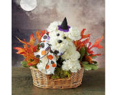 Witchy Pooch in San Angelo TX, Bouquets Unique Florist
