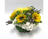 Sunny Sunflowers in Belleville ON, Live, Love and Laugh Flowers, Antiques and Gifts