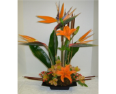 Contemporary Birds in Kennesaw GA, Kennesaw Florist
