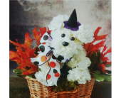 Withcy Pooch in Valley City OH, Hill Haven Farm & Greenhouse & Florist