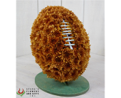 Floral Lombardi Trophy in Indianapolis IN, Steve's Flowers and Gifts