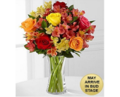Gratitude Blooms Mixed Bouquet in Cicero NY, Guignard Florist