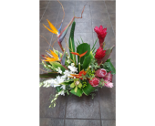 Beautiful Tropical arrangement in Carlsbad CA, El Camino Florist & Gifts