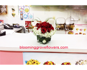 BGF0492 in Buffalo Grove IL, Blooming Grove Flowers & Gifts