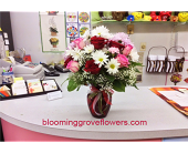 BGF1108 in Buffalo Grove IL, Blooming Grove Flowers & Gifts