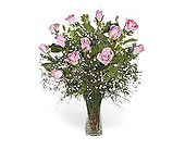 Stein Dozen Pink Roses in Burlington NJ, Stein Your Florist