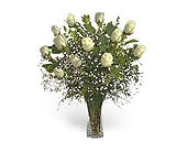 Stein Dozen White Roses in Burlington NJ, Stein Your Florist