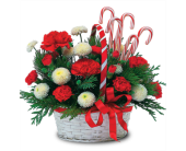 Candy Cane Basket in Savannah GA, John Wolf Florist