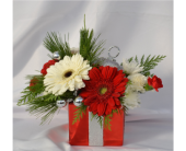 Gift of Christmas in Zeeland MI, Don's Flowers & Gifts