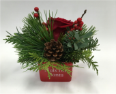 Nuts for Santa in Belleville ON, Live, Love and Laugh Flowers, Antiques and Gifts