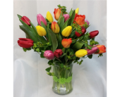 Twenty Tulips- Mixed Colors in Grand Rapids MN, Shaw Florists