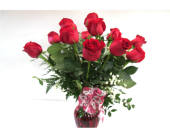 Dozen Long Stemmed Red Roses in Worcester MA, Holmes Shusas Florists, Inc