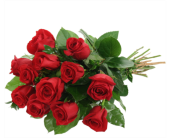 Dozen Red Rose Bouquet in Richmond Hill ON, FlowerSmart