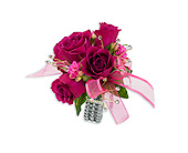 Fuchsia Wrist Corsage in Bradenton FL, Florist of Lakewood Ranch