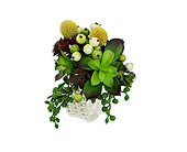 Organic Wrist Corsage in Bradenton FL, Florist of Lakewood Ranch