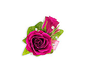 Fuchsia Boutonniere in Bradenton FL, Florist of Lakewood Ranch