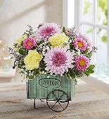 Blooming Garden Cart in Camp Hill and Harrisburg PA, Pealers Flowers