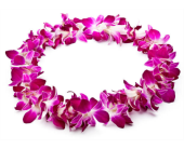 Purple dendrobium orchid lei in Palo Alto CA, Village Flower Shoppe