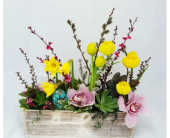 Spring has Sprung! in Redmond WA, Bear Creek Florist