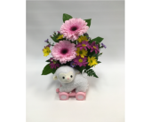 Newborn Baby in Belleville ON, Live, Love and Laugh Flowers, Antiques and Gifts