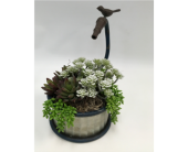 Artificial Succulent Garden in Belleville ON, Live, Love and Laugh Flowers, Antiques and Gifts