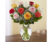 Multi Color Rose Special in Huntington WV, Archer's Flowers and Gallery