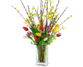 Tulips & Forsythia in Savannah GA, John Wolf Florist