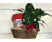 Welcome Home Realtor Basket in Auburn WA, Buds & Blooms