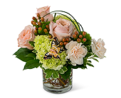 Expressions of Gratitude in Methuen MA, Martins Flowers & Gifts